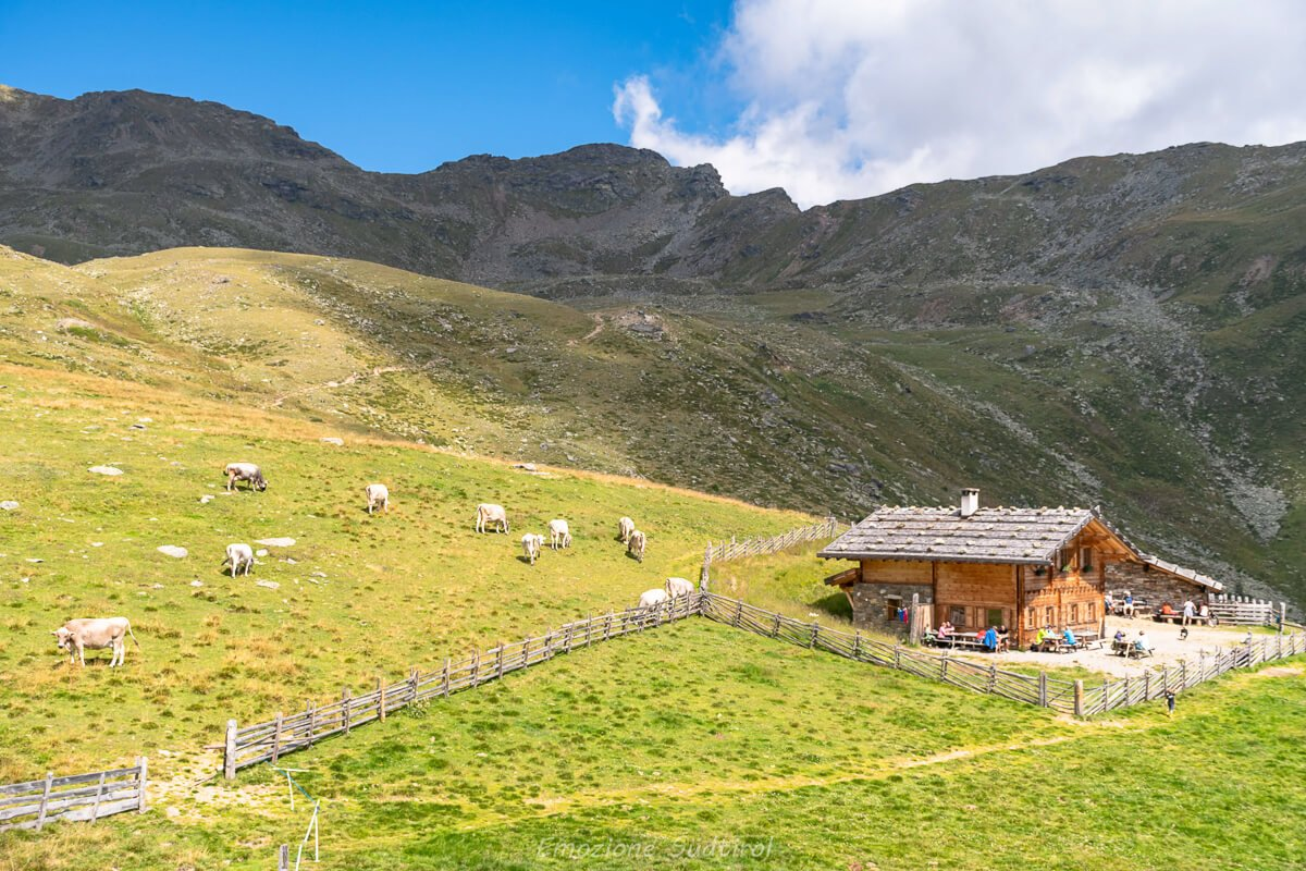 malghe Val d'Ultimo: Marschnell Alm